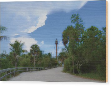Wood Print featuring the photograph Sanibel Lighthouse Road by Timothy Lowry