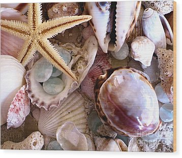 Sanibel Shells Wood Print by Colleen Kammerer