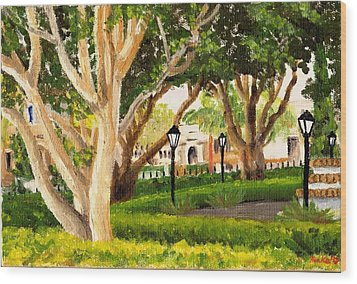Santa Barbara Wood Print by Blake Grigorian