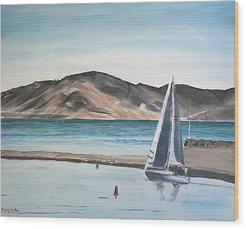 Santa Barbara Sailing Wood Print by Ian Donley