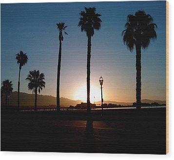 Santa Barbara Sunrise Wood Print by Colleen Renshaw