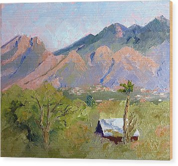 Santa Catalinas Wood Print