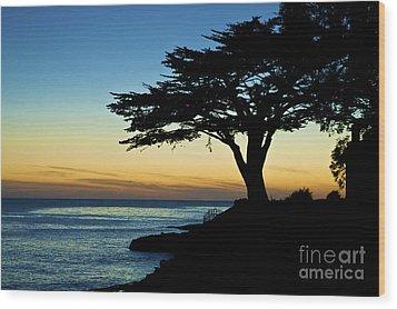 Santa Cruz California 3 Wood Print by Micah May