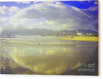 Santa Monica Beach Wood Print by Jerome Stumphauzer