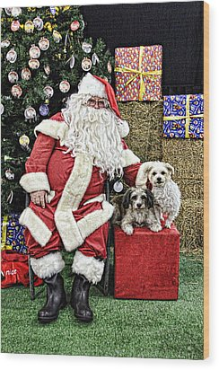 Santa Paws  Wood Print by Helen Akerstrom Photography