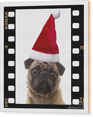 Santa Pug - Canine Christmas Wood Print by Edward Fielding