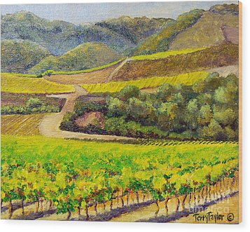 Santa Rita Color Wood Print by Terry Taylor