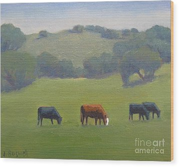 Santa Ynez Cows Wood Print by Jennifer Boswell