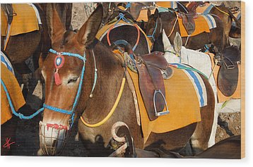 Santorini Donkeys Ready For Work Wood Print