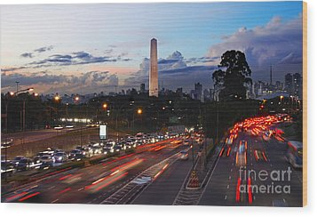 Sao Paulo Skyline - Ibirapuera Wood Print