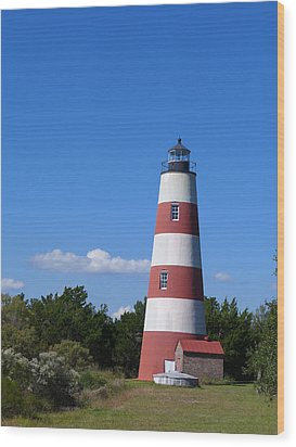 Sapelo Light Wood Print