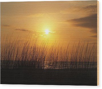 Sarasota Sunset's Wood Print