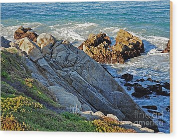 Sarcophagus Formation On Seaside Rocks Wood Print by Susan Wiedmann