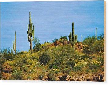 Sargaro Cactus And Flowers Wood Print by Richard Jenkins
