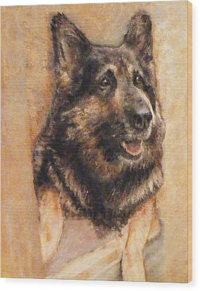 Sasha German Shepherd Wood Print