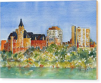 Saskatoon Panorama Wood Print by Pat Katz