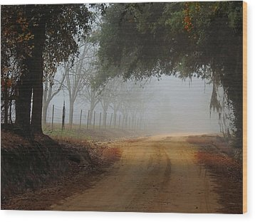 Satilla River Road Wood Print