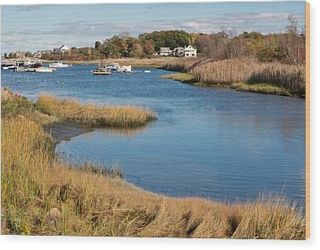 Satuit Brook Scituate Mass Wood Print by Gail Maloney