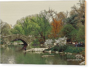 Saturday In Central Park Wood Print by Linda  Parker