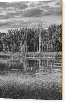 Saturday Meditation Wood Print