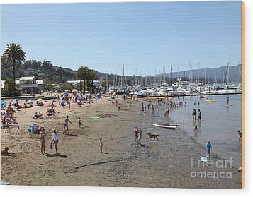 Sausalito Beach Sausalito California 5d22696 Wood Print by Wingsdomain Art and Photography