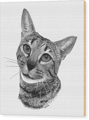 Savannah Cat Wood Print