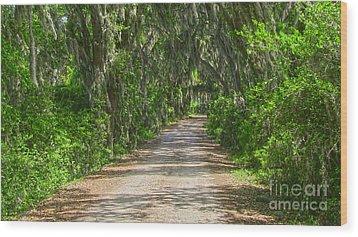 Savannah Country Road Wood Print by D Wallace