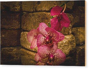 Savannah Grey Orchid Wood Print by Richard Kook