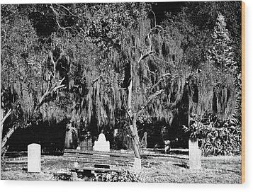 Savannah Resting Place Wood Print by John Rizzuto