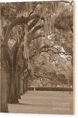 Savannah Sepia - Emmet Park Wood Print by Carol Groenen