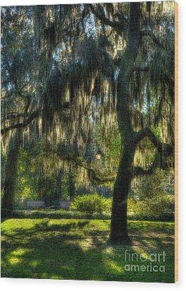 Savannah Sunshine Wood Print