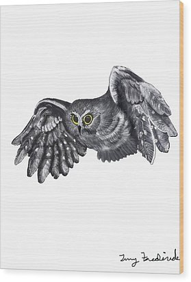 Saw-whet Owl Wood Print by Terry Frederick