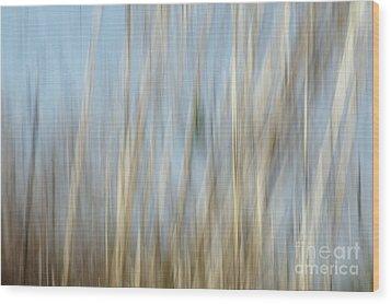 Sawgrass In Motion Wood Print by Benanne Stiens