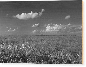 Sawgrass Prairie  Wood Print by Andres LaBrada