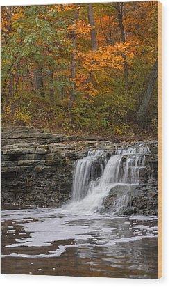 Sawmill Creek 2 Wood Print by Larry Bohlin
