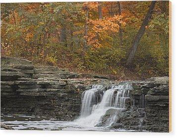Sawmill Creek Wood Print by Larry Bohlin