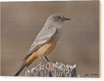 Say's Phoebe On A Fence Post Wood Print by Jeff Goulden