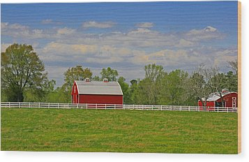 Wood Print featuring the photograph Sc Horse Farm by Andy Lawless