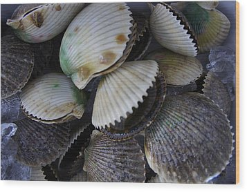 Scallops Wood Print by Laurie Perry