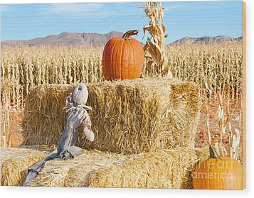 Wood Print featuring the photograph Scarecrow Breaktime by Vinnie Oakes