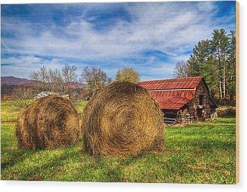 Scarecrow's Dream Wood Print by Debra and Dave Vanderlaan