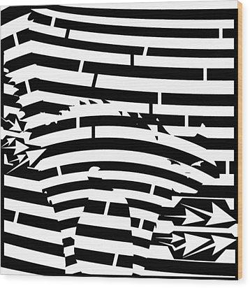 Scared Kitty Maze Wood Print by Yonatan Frimer Maze Artist