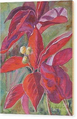 Scarlet Wood Print by Mohamed Hirji