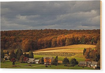 Scenic Autumn Wood Print by Elsa Marie Santoro