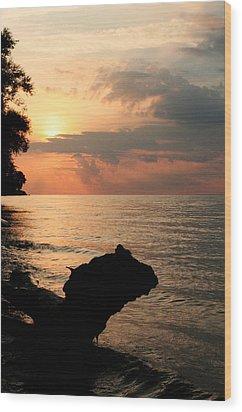 Scenic Beach Driftwood Sunset Wood Print by Heather Allen