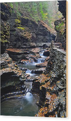 Scenic Cascade Wood Print by Frozen in Time Fine Art Photography