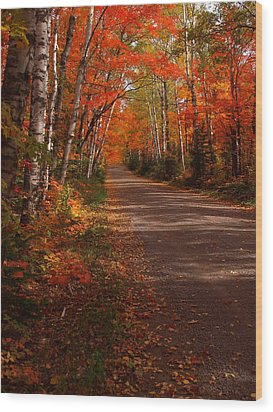 Scenic Maple Drive Wood Print