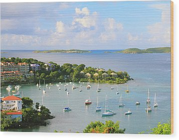Scenic Overlook Of Cruz Bay St. John Usvi Wood Print