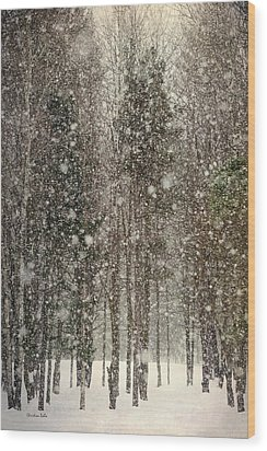 Scenic Snowfall Wood Print by Christina Rollo