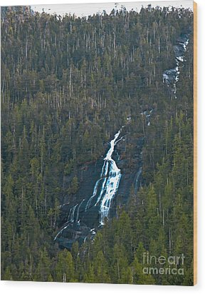 Scenic Waterfall Wood Print by Robert Bales